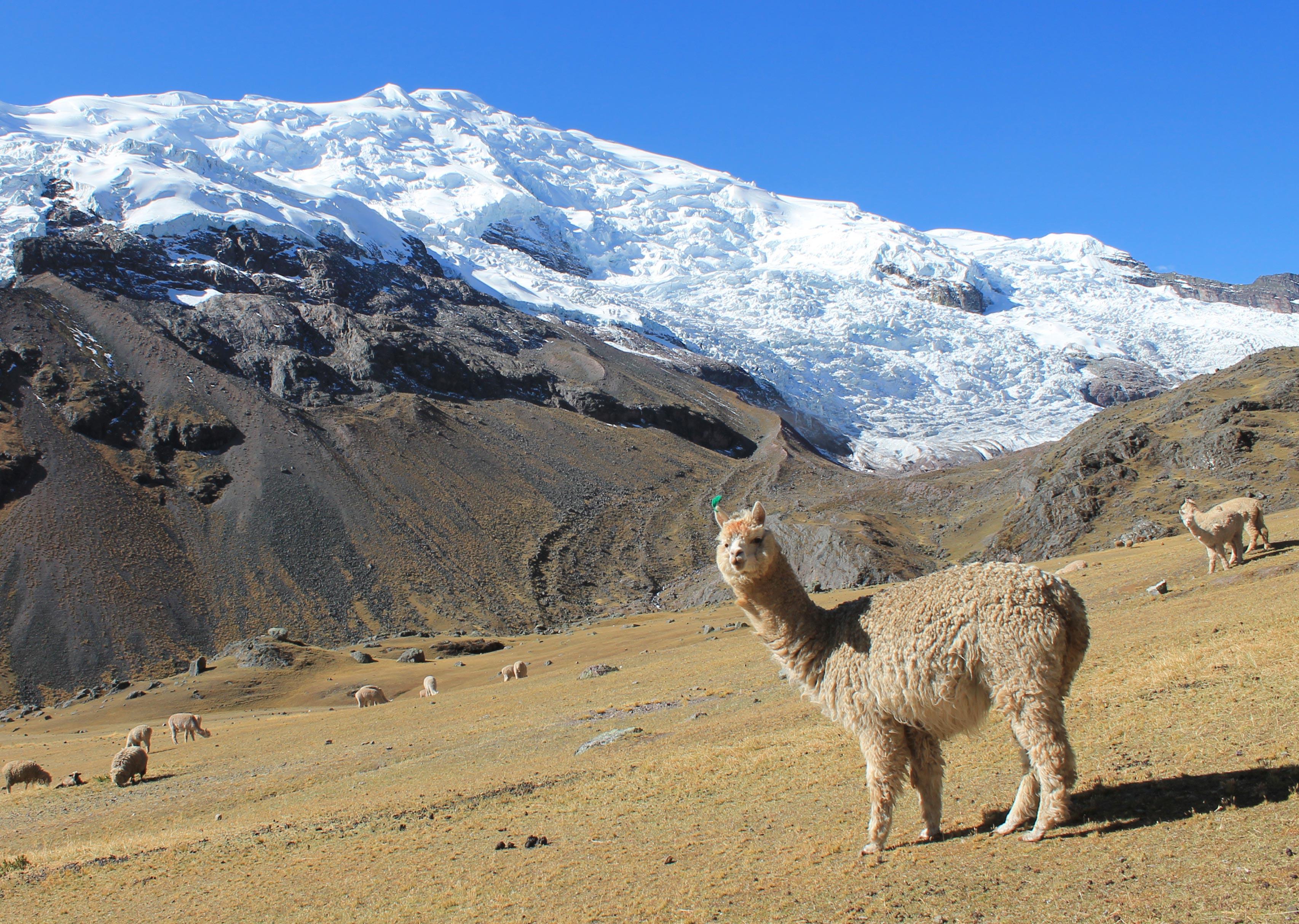 Peru Ausangate Trek Ausangate Concha Ayni Peru