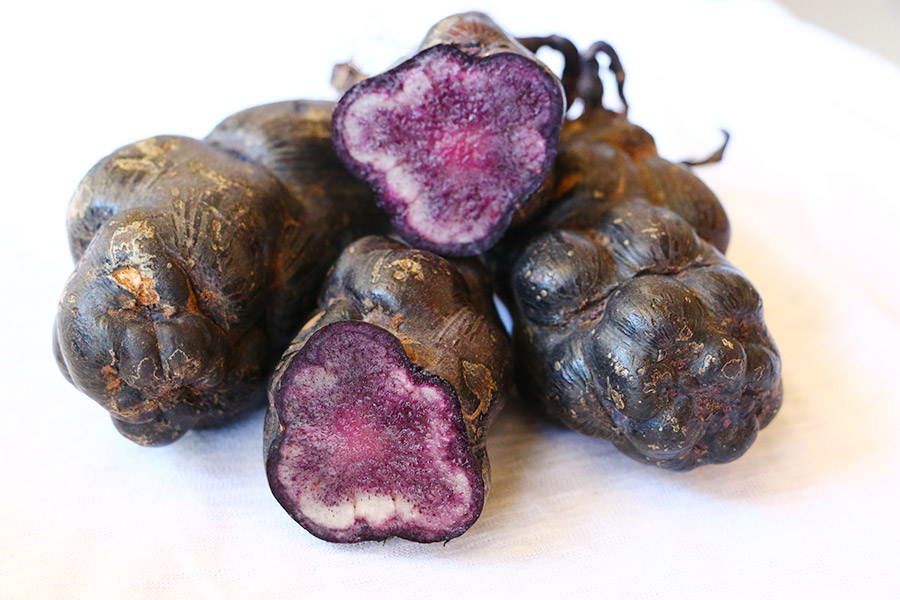 Peru Culinary Tour Purple Potatoes Año Ayni Peru