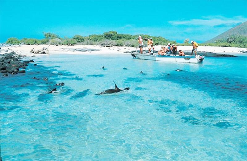 Ecuador Galapagps Islands Ayni Peru