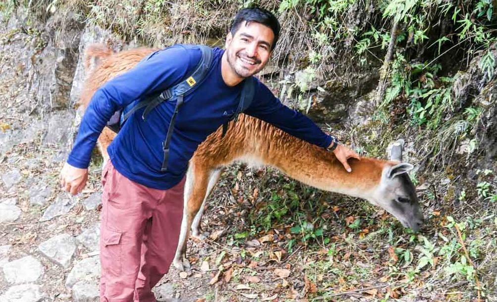 Machu Picchu with guide and llama